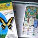 Key West Butterfly Guide