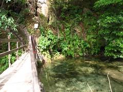 Leading to the cave (Ezniter) Tags: waterfall cascada huasteca sanluispotosi tamul tamasopo