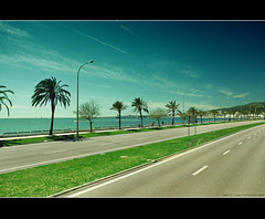 City of palm Trees (Hadi Al-Sinan Photography) Tags: city trees vacation canon island photography march interesting spain shot mark sunny best palm explore ii 5d mallorca 2010 hadi 2470mm 2470 alsinan
