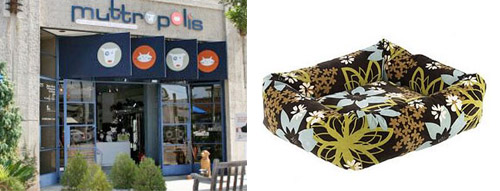 muttropolis la jolla location and dog bed
