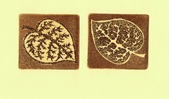 листья стандарт 001 (tim.spb) Tags: original etching heart turtle postcard small snail crab valentine ornament owl plates proverbs desigh ãðàôèêà открытки графика малые fibonachi aquafortis формы офорт îòêðûòêè ìàëûåïîëèãðàôè÷åñêèåôîðìû îôîðò ëèñòüÿñòàíäàðò печатные