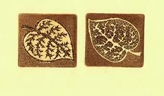001 (tim.spb) Tags: original etching heart turtle postcard small snail crab valentine ornament owl plates proverbs desigh     fibonachi aquafortis