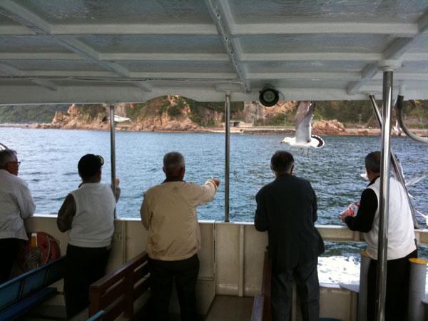 遊覧船上からウミネコの餌付けを楽しむお客様