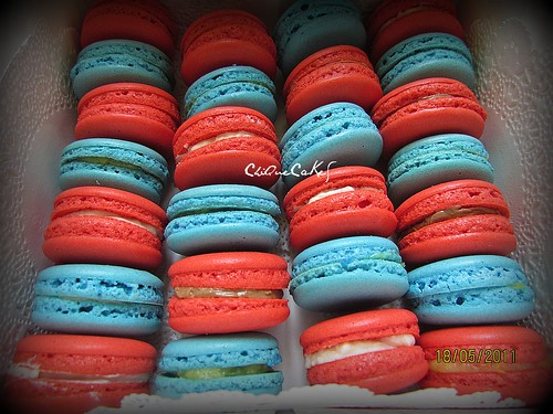 macarons blue & red