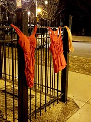 tender is the night (williamw60640) Tags: streetphotography bustier camisole neglige lingerie chicago