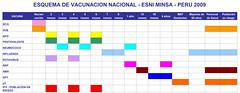 CRONOGRAMA DE VACUNACION 2009.xls