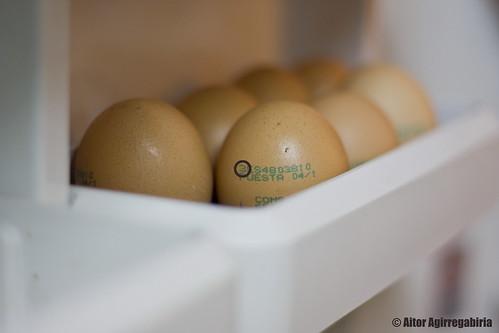 Huevos (no) ecológicos