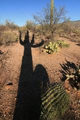IMG_9664 (simon_travelboy) Tags: arizona tucson saguaronationalpark