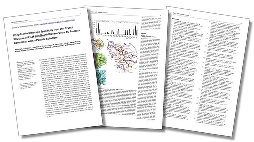 Preprint Pages