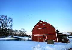 Winter Barn (` Toshio ') Tags: park trees winter sky snow ice nature field birds animals barn forest fence frozen snowstorm maryland farmanimals redbarn tms midatlantic toshio tellmeastory annearundel kinderfarmpark kinderfarm heritage2011