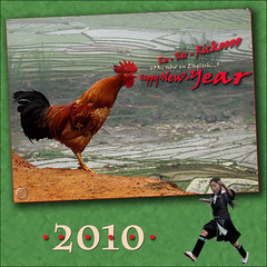 Kukurickooooo!!! 2010 (NaPix -- (Time out)) Tags: new green nature landscape happy hope jump asia southeastasia peace rice action year farming vietnam land rooster tet greeting sapa hmong 2010 paddies tms tellmeastory napix thisyearlunarnewyearwillstartonvalentineday bestwishesandhopeforpeace