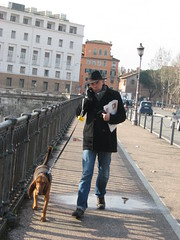 37/365 too busy (terevinci) Tags: street city people italy dog man rome roma animals cane walking 2010 37365