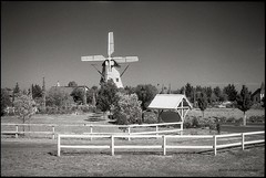 Windmill Gardens, Rockbank (Adam Dimech) Tags: blackandwhite bw film windmill field gardens landscape restaurant hall farm australia victoria reception venue ilford paddock plumpton windmillgardens rockbank sfx200 horsefence licensedrestaurant warrensbrookfaire
