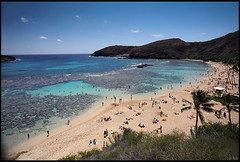Hanauma Bay, Oahu, Hawaii (rickz) Tags: ocean park sea sky mountain tree tourism beach water swimming swim landscape hawaii bay sand marine snorkel pacific oahu turquoise dive diving tourists snorkeling pacificocean palmtree scubadiving diver honolulu hanaumabay reef hanauma preserve coralreef traveler sandbeach turquoisesea turquoiseseas hanaumabaynaturepreserve coralscuba
