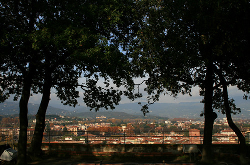 Vista panoramica dalla Torre Guinigi