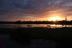 Sunset near Holme-next-the-Sea, Norfolk (mbphillips) Tags: marshes holmenextthesea norfolk england sunset greatbritain uk unitedkingdom europe britishisles 英国 英國 欧洲 歐洲 유럽 ヨーロッパ 영국 mbphillips canon450d sigma18200mmf3563