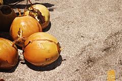 : coolers (Lakad Pilipinas) Tags: morning sea hot beach fruit sand asia break coconut juice philippines shore southeast refreshing bicol luzon buko camarinessur nikond80 camsur sagnay nikkor1855mmvr audioscience sangoyo christianlucassangoyo