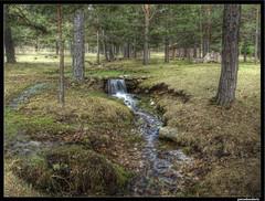En la Fuente del Angosto (pacodonderis) Tags: spain guadalajara olympus hdr algemesi e510 altotajo mywinners flickraward concordians alcoroches photoshopcreativo pacodonderis