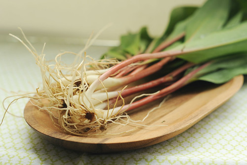 pickled ramps