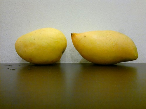 From left: Benishan and Totapuri Mangoes