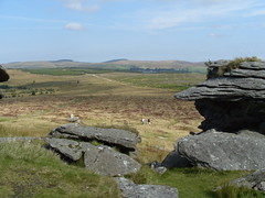 S1051760 (AppleJays) Tags: england nationalpark hills devon fields moors dartmoor moorland aonb tors