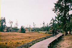 F1030030_lr (chi.ilpleut) Tags: kinmen taiwan island quemoy 2017 chinesenewyear lunar film expiredfilm kodakelitechrome100 iso100 crossprocessing 135mm 35mm analogue ilovefilms kodakfilm 底片 過期底片 柯達 記憶 蹤跡 金門鎏金之島kinmen 台灣 海島 島嶼 外島 回憶 走春 大晴天拍照天 晃晃 隨拍 我不在,就在去海邊的路上 海景 outing 冬陽 暖暖 暖陽 思念 漫步