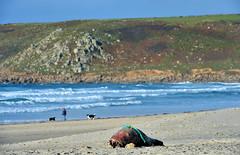England 324 Sennen cove (Pixelkids) Tags: sennencove cornwall cornishcoast uk england beacg strand meer