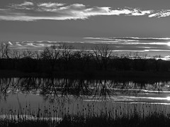 51/365 2017 - EXPLORED - Thanks so much! (d2roberts) Tags: 365the2017edition 3652017 day51365 20feb17 fortcollins colorado arapahobendsnaturalarea