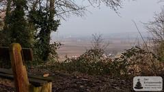 Ausblick über Rheinhessen