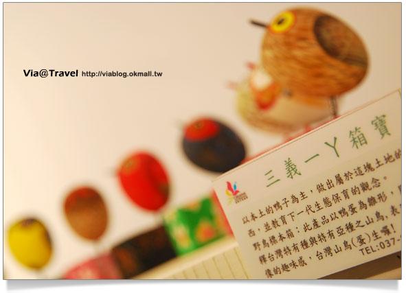 台中舊酒廠-2009台灣設計博覽會14