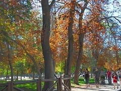 Otoo (sherca) Tags: madrid autumn otoo elretiro digitalcameraclub sherca vanagram