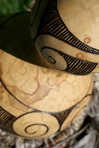 Koru Gourd detail