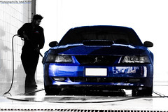 Car Portrait (Talal Al-Mtn) Tags: blue ford gear carwash kuwait manual fordmustang oman washing v8 bbk intake saleen q8 topgear bluedevil kwt fordracing fordmustanggt mustangcobra canon450d  talalalmtn  bytalalalmtn