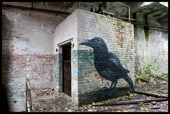 Roa - Crow (Romany WG) Tags: street urban art abandoned birds animals graffiti industrial factory decay crow carrion explorers exploration raven derelict urbex roa