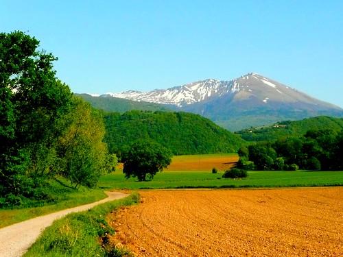 Chemin vers des Alpes