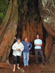 BG Guests - San Francisco Road Trip -76 (Meggy Cline) Tags: bulgarian