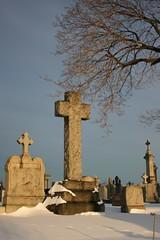 Charms and peace (Imnotblue) Tags: nyc winter snow newyork cemetery brooklyn