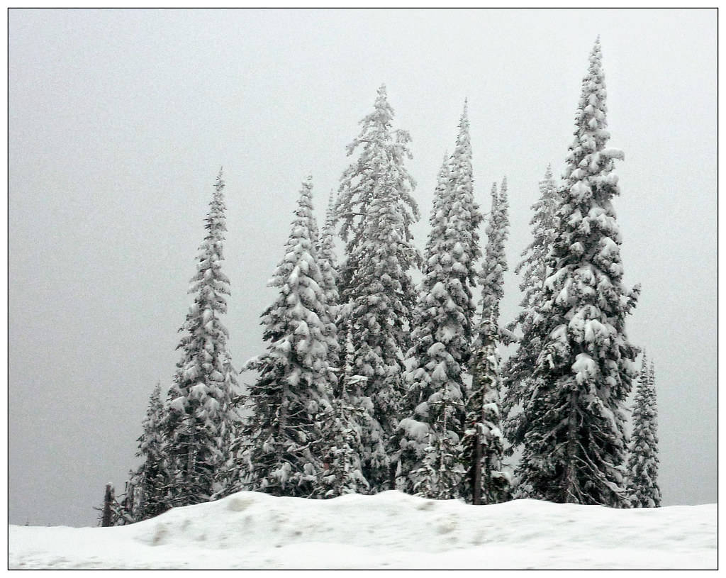 2009/11/28 - Between Castlegar & Cranbrook BC