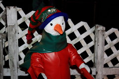 Zoolights Penguin (lehcar1477) Tags: christmas decorations cold castle zoo lights penguin warm santas time massachusetts lit dressed stoneham zoolights santascastle