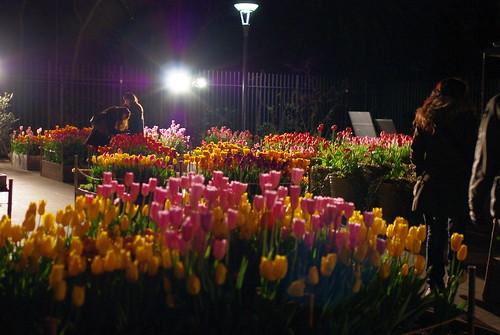 100116 新春☆春を先取りツアー14