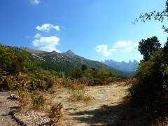 Montée vers la crête de Prunu : sur le sentier balisé bleu, avec les aiguilles de Bavella et la Punta di A Bambiola