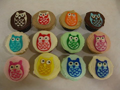 IMG_2268 (megpi) Tags: california ca food colors birds cake work dessert design la cupcakes baking losangeles rainbow decoration cupcake bakery sweets icing manhattanbeach owls assorted frosting susiecakes