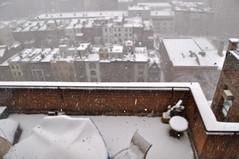 New York City Blizzard 2010 (Sarah_Ackerman) Tags: nyc newyorkcity snow newyork cold weather centralpark manhattan upperwestside february blizzard snowday uws 2010