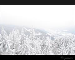 Zauberberg, Semmering in Austria (capreoara) Tags: vienna wien mountain snow ski tree pine landscape austria cabin nikon peak february viena 2010 semmering zauberberg d3000