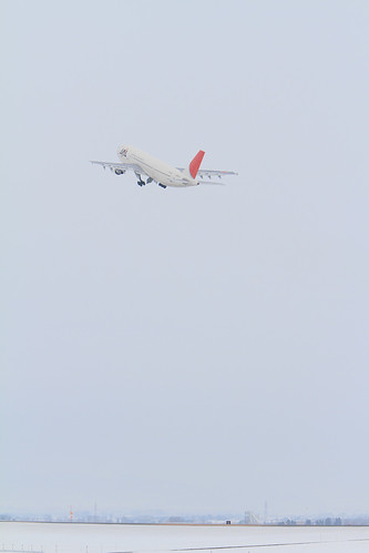 Red in White (JAL's A300-600R @RJEC)