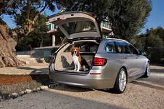 2011-BMW-5-Series-Touring-27