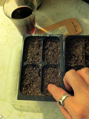 Have some wine and plant seeds.
