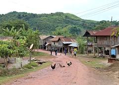 phonGU (jumbokedama) Tags: phongsali phongsaly ponsaly phongsalylaos trekkingphongsaly remotelaos ethnchilltribes hilltribes colorfulhilltribes akha akhahilltribes hilltribejewelry hilltribeheadgear trekkinglaos laostrekking laosethnicpeople villagesinlaos laovillages laosculture ehtnicculturelaos amazing trekking