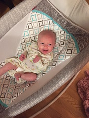 "Dani in Her Bassinet • <a style=""font-size:0.8em;"" href=""http://www.flickr.com/photos/109120354@N07/32986888871/"" target=""_blank"">View on Flickr</a>"