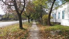 Crimea. Staryi Krym. November 2016 (nikolasrybin) Tags: november russia staryikrym fall 2016 traveling crimea olympus pen epl3